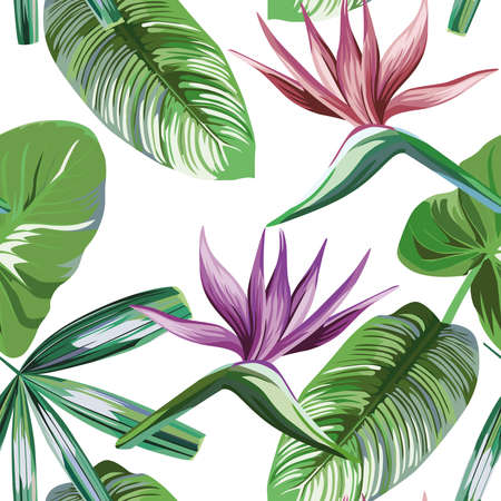 Seamless vivid exotic pattern with tropical palm, banana leaves and bird of paradise, strelitzia flower on a white background green vector style. Hawaiian tropical natural floral wallpaper