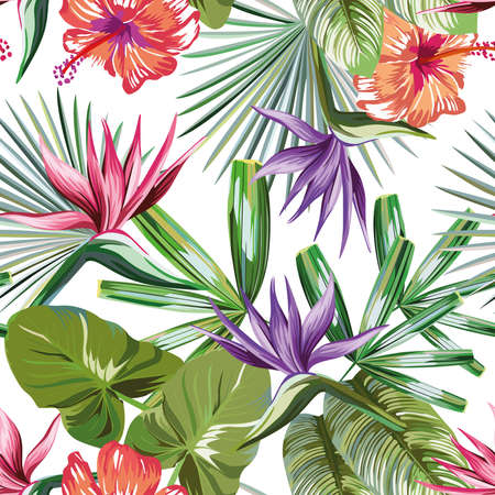 Seamless vivid exotic pattern with tropical palm, banana leaves and bird of paradise, strelitzia, hibiscus flower on a white background green vector style. Hawaiian tropical natural floral wallpaper 向量圖像