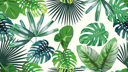 A high resolution 4k green leaves tropical, botanical seamless exotic wallpaper on white background. Sale summer, autumn, spring pattern. 向量圖像