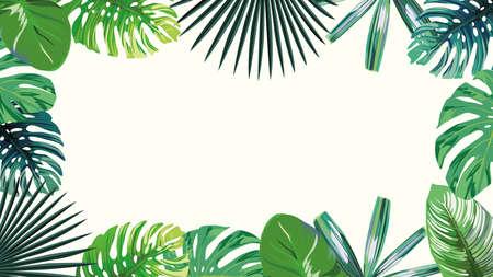 A high resolution 4k green leaves tropical, botanical frame, exotic wallpaper on white background. Sale summer, autumn border. 向量圖像