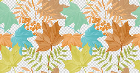 Beautiful 4k autumn wallpaper seamless version maple leaf and rowan in a multicolored design. Can be used with different color backgrounds.