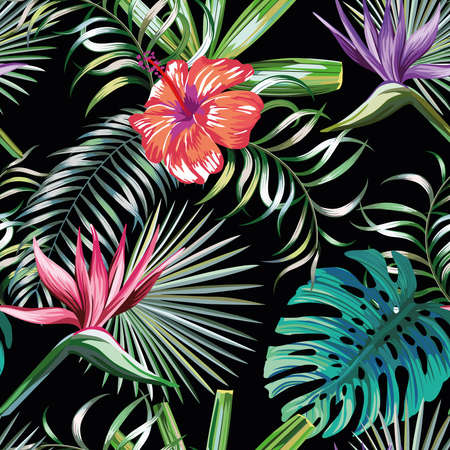 Beautiful exotic tropical plants and hibiscus, bird of paradise flowers seamless vector pattern on black background 向量圖像