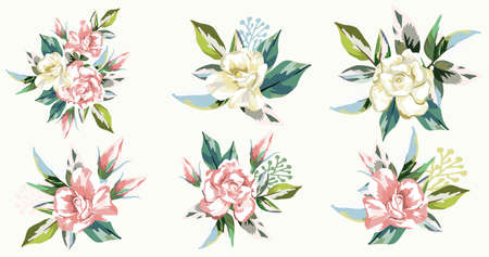 Set of vector bouquets of pink and cream roses framed green leaves on white background 向量圖像