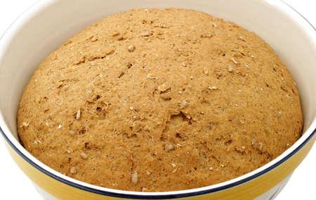 Hearty Bread Dough Multi Grain Bread In 12 Inch Bowl Homemade With 100