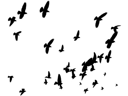 flying birds: Vector Birds Silhouettes Flying Away - Peace to the World