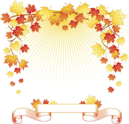 autumn background: Maple leaf and ribbon Illustration