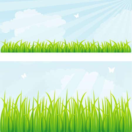 prato e cielo: Illustrazione vettoriale di sfondo estate con erba
