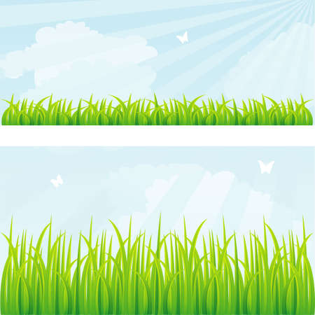 clouds: garden: Vector illustration of Summer background with grass