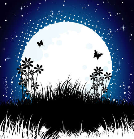 Moon night Stock Vector - 14865088
