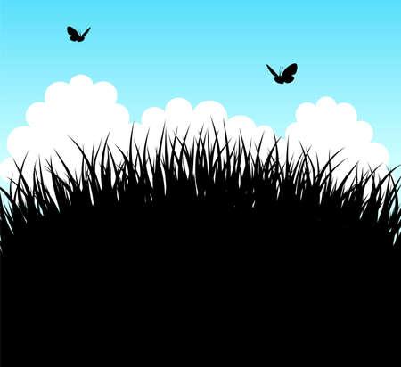Vector illustration of Summer grass Stock Vector - 14863637