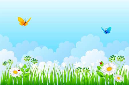butterfly ladybird: Vector ilustraci�n de la hierba del verano Vectores