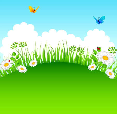 butterfly garden: Vector illustration of Summer grass