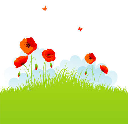 Red poppies back Stock Vector - 14867376