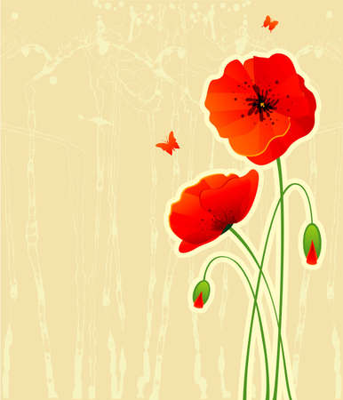 Red poppies back Vector