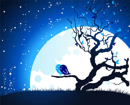 Birds on moon light Vector