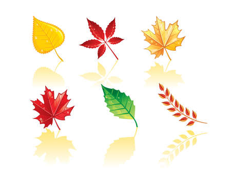 toter baum: Autumn leafs Illustration