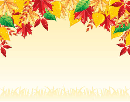 Autumn leafs back, vector illustration Stock Vector - 14867629