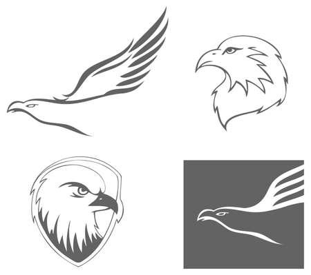 american eagle: Eagles