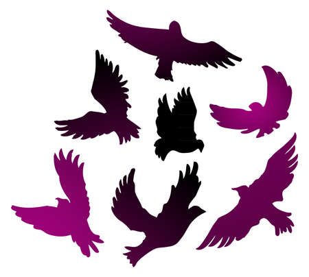 Birds vector set Vector