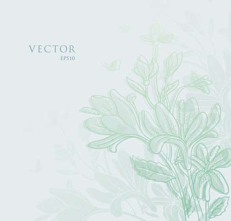 Vector illustration de floral backgrond