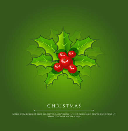 illustration of Holly christmas branch green Vector