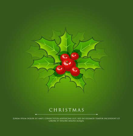 ilex: illustration of Holly christmas branch green