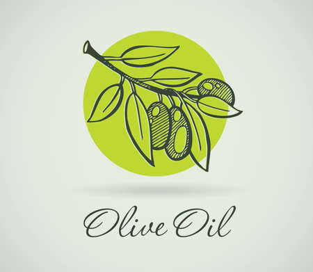 Vector illustration of Hand-Drawing Olive Vector