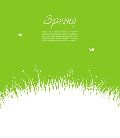 grass land: Vector illustration of Summer background with grass