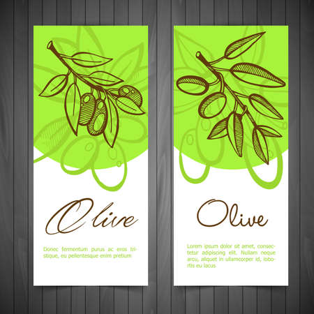 alberi da frutto: Illustrazione vettoriale (eps 10) di disegno a mano Olive