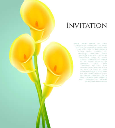 vertical garden: illustration of Invitation with callas flowers Illustration