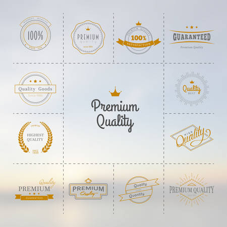 satisfaction: Vector illustration of Premium quality labels set