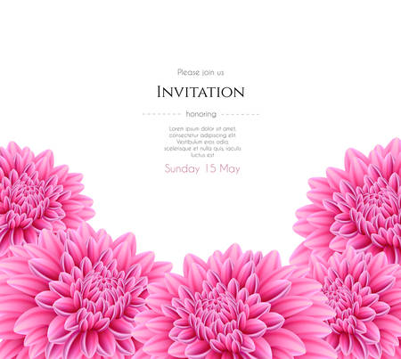 aster flower: Vector illustration of Blooming beautiful aster flower