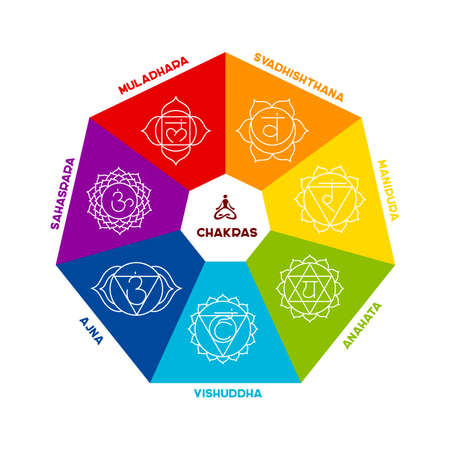 vishuddha: Vector illustration of Color chakra scheme on white background