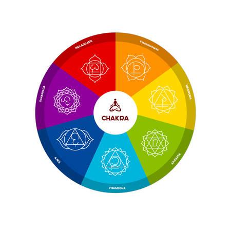 reiki: Vector illustration of Color chakra scheme on white background
