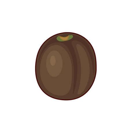 Vector illustration of cute cartoon kiwi  fruit on white background