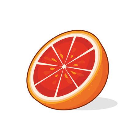 Vector illustration of grapefruit half cartoon  fruit on white background