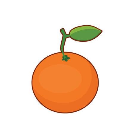 Vector illustration of cute cartoon orange fruit on white background