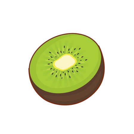 Vector illustration of cute cartoon kiwi half on white background 向量圖像