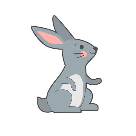 Vector illustration of cute gray hare on white background. 向量圖像