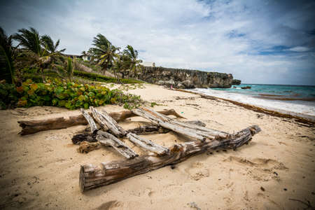 A raft on a tropical beach remember ancient traveler who traveled the world with makeshift vessels