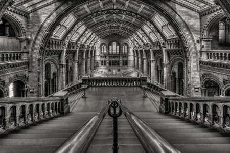natural history museum: Natural History Museum London Editorial