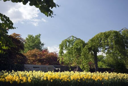 Several photo's from the beautifull gardens around the Castle of Arcen in the Netherlands. Stock Photo