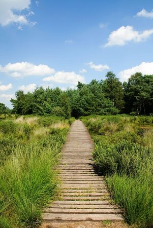 A path in the country side leading nowhere Stock Photo