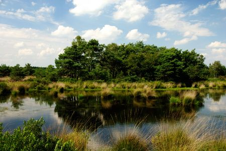A wetland area where in earlier days peat was produced. Stock Photo