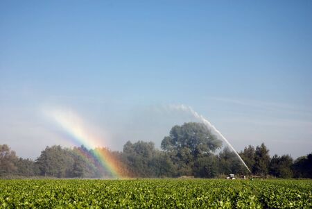 A farmer is watering his crop. The sun shows us all colors of the rainbow.
