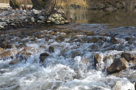 tributary: Rhine tributary in Karlsruhe