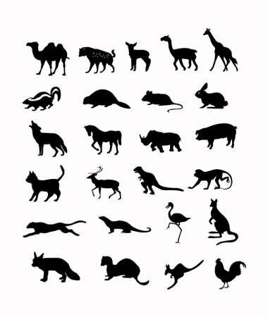 wild animals vector illustration background in black