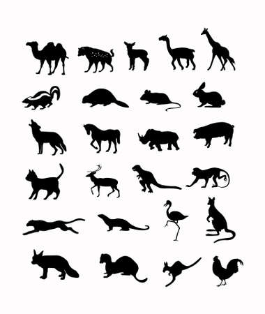 wild animals vector illustration background in black  illustration