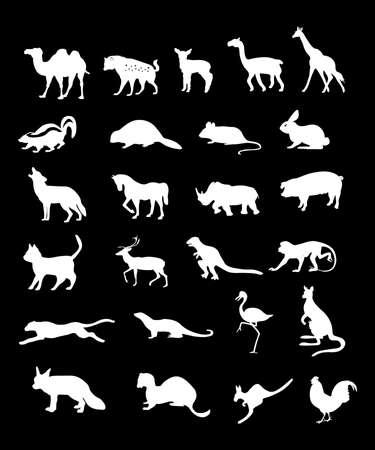 wild animals vector illustration background in white illustration