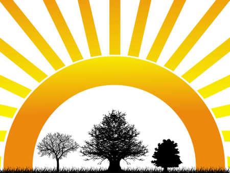delightful: Abstract vector illustration of three tree on sunrise background